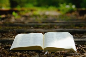 bible, god's words, nature